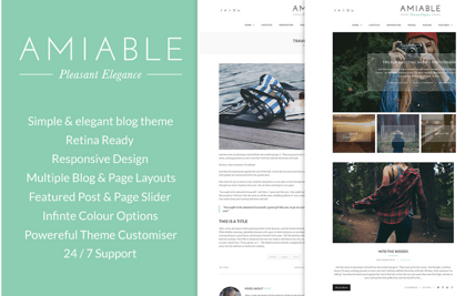 Amiable WordPress Theme